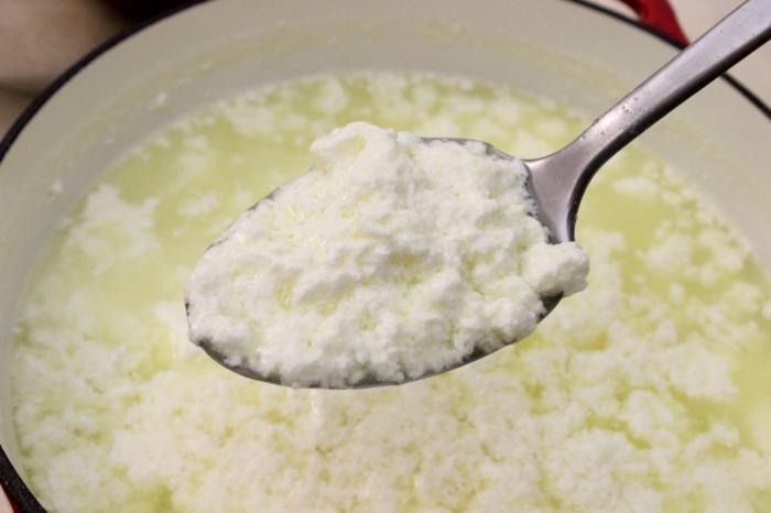 Что приготовить из свежего молока в домашних условиях 320