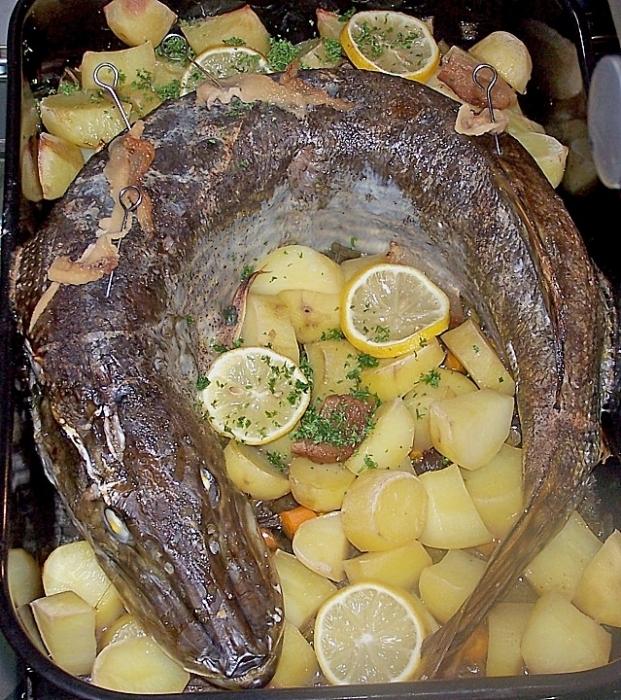 Щука в духовке с лимоном рецепты целиком