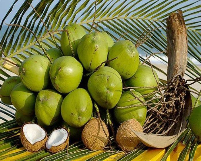 Як їсти кокос