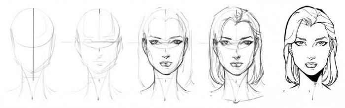 Пропорції обличчя людини при