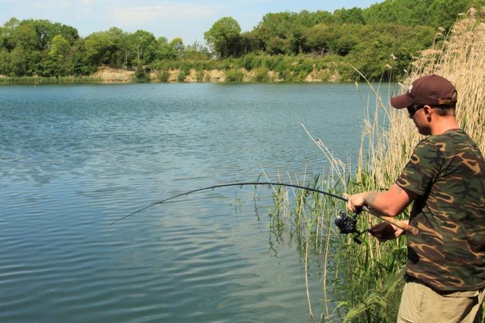 ловля сазана с берега видео