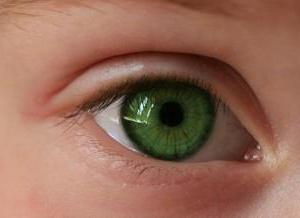 С глазу на глаз - это что такое с глазу на глаз